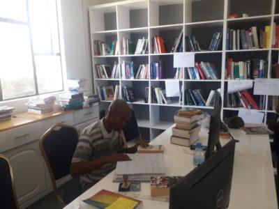 ICSEE Consulting Librarian Moni Sausi